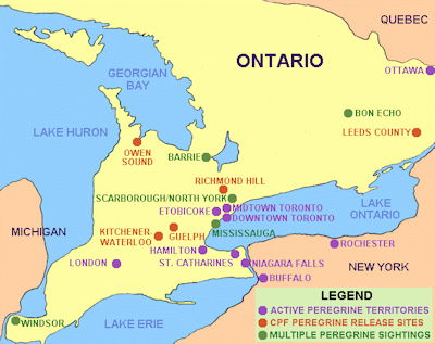Owen Sound Map Ontario The Butt Hole Of The Elephant